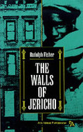 Book cover for 'The Walls of Jericho'