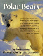 Book cover for 'Polar Bears'