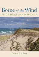 Book cover for 'Borne of the Wind'