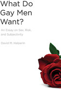 Book cover for 'What Do Gay Men Want?'