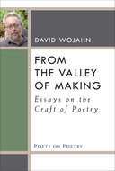 Product cover for 'From the Valley of Making: Essays on the Craft of Poetry'