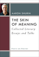 Book cover for 'The Skin of Meaning'