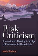 Book cover for 'Risk Criticism'
