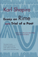 Cover image for 'Essay on Rime'