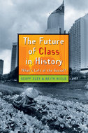 Cover image for 'The Future of Class in History'
