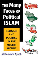Book cover for 'The Many Faces of Political Islam'