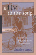 Book cover for 'A Fly in the Soup'