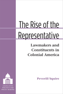 Cover image for 'The Rise of the Representative'