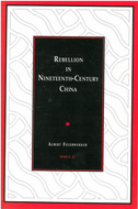 Cover image for 'Rebellion in Nineteenth-Century China'