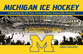 Cover image for 'Michigan Ice Hockey'