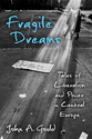 Cover image for 'Fragile Dreams'