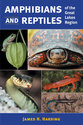 Cover image for 'Amphibians and Reptiles of the Great Lakes Region'